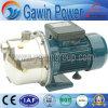 Pompe à jet d'eau autoprojecteur STP