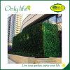 Onlylife sentía el plantador colgante verde grande económico los 50X50cm