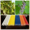 De kleurrijke Stevige Staaf van de Glasvezel voor de Steun van de Wijngaard
