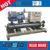 Bock-Kühlraum-Kompressor-kondensierende Geräte