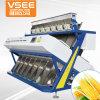 Neueste ISO-u. Cer-Bestes mit hohem Ausschuss Erdnuss-Farben-Sorter-Diplommaschine CCD-448channels
