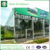 野菜およびトマトのための農業のプラスチックフィルムの温室