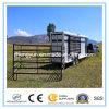 경제 5footx10foot 휴대용 말 안정되어 있는 위원회 또는 가축 가축 우리 위원회