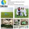 Polvere dell'erba del frumento/supplemento di erbe/supplementi di erbe/affaticamento antinvecchiamento di /Anti/anti polvere della spremuta dell'erba dell'orzo invernale del Cancer/polvere erba di orzo