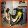 デジタル印刷の織物のフラグのキャンバス(SFC100)