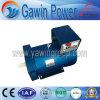 상단 발전기를 위한 중국 제조자 St 5kw 발전기