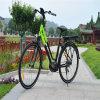 700c 250W MID-Conducción Motor City bicicleta eléctrica bicicleta eléctrica del camino