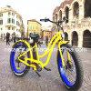 Продавать женского тучного Bike покрышки электрического горячий (RSEB-506)