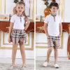 Baumwollfabrik-Preis-Schule-Plaid-kurze Hosen und Hemd