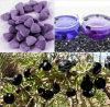 Nourriture biologique, 100% Wolfberry noir sauvage normal/comprimé à croquer chinois de Wolfberry, roi des anthocyanines, anticancéreux, anti-vieillissement, Wolfberry/nèfle