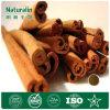 100% pur extrait de l'écorce de cannelle (cinnamaldéhyde)