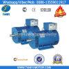 Fornitore cinese del generatore della st del rame puro