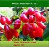 Cornus het Uittreksel van Officinalis, Loganin, Morroniside