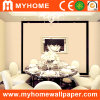 Color ordinaire Wall Paper pour Decorative