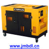 Dynamo de copia de seguridad de 10 Kw (BM12T)