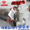 Válvula de puerta femenina del acero inoxidable del fabricante de China
