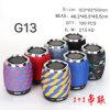 Novas colunas Bluetooth com a FM G13