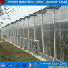 토마토 PC 온실 물자를 위한 농업 온실