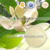 Nature N ° CAS 35354-74-6 Honokiol