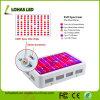 1200W 1000W 900W 600W 300Wの二重チップ完全なスペクトルはすべての段階温室のHydroponic屋内プラントのためのUV&IRのランプを植物成長の育てる