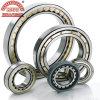 Rolamento de rolo profissional do cilindro da fabricação