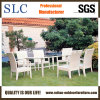 Puder-überzogene Aluminiumgarten-Möbel (SC-B1016)