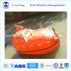 Lifeboat спасения морского пехотинца полно заключенный с Davit