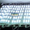 DC24V 36 W de luz LED Car 3030 Barra de luces LED resistentes al agua para cajas de luz Accesorios para automóviles de Color Blanco alto brillo