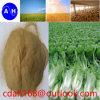 Fertilizzante fogliare dell'oligoelemento del chelato 10% dell'amminoacido
