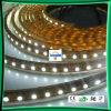 Tiras flexibles impermeables del LED (LC-WP3528-12V-60-IP68)