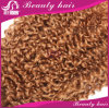 Cabelo Curly Kinky do Virgin do melhor cabelo peruano Curly Kinky do Virgin dos produtos de cabelo de Rosa do Afro 7A 4 pacotes do Weave Curly do cabelo humano do Weave
