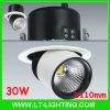 30W lumière de voie de l'ÉPI LED, morceau du citoyen LED (LT-T30B)
