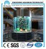 Cilíndrica del tanque de peces ornamentales