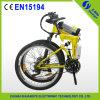 Bici elettrica profilatura della montagna del acciaio al carbonio, fornitore della Cina