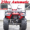 Novo 250cc Bode Quad Automatic Sports ATV (MC-356)