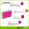 300W-1200W полный спектр СИД растет светлым для крытого парника засаживая цветки/семена/овощи