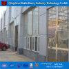 Invernadero de cristal barato profesional para la agricultura