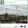 Casa verde de cristal del sistema del control automático para la agricultura