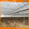 Mlutiスパンの構造が付いている高い収穫のプラスチックフィルムの温室