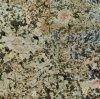 Golden Persa Lajes de granito ladrilhos