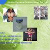 Excllent 효력 (중국 공장 공급 CAS에서 5A Hydroxy) Laxogenin 분말: 56786-63-1