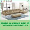 Curva grande contemporánea L sofá de la oficina de la dimensión de una variable