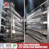 De Apparatuur van de Legkip van de Leverancier van China van de Kooi van de kip voor het Landbouwbedrijf van het Gevogelte van het Ei