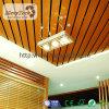 Mejor techo superior de la azotea de Eco WPC con concepto sano