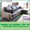 ヨーロッパの北欧様式の革家具の居間のソファー