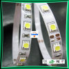 Tira de LED SMD //TIRA DE LEDS de luz LED Flexible (LC-WP5050/12V-30P-IP65).