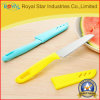 Нож оптового плодоовощ ножей кухни нержавеющей стали обстрагывая
