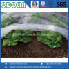 Jungfrau-widerstehen nichtgewebtes Frost-Deckel-Gewebe 100% mit UV für Gemüse