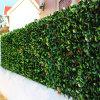 Il verde artificiale esterno lascia la rete fissa artificiale decorativa del foglio dell'EDERA