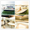 22FT High Speed Fiberglass Fishing Boat Sport Yacht